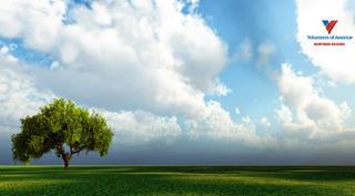 Arbor-Day.jpg