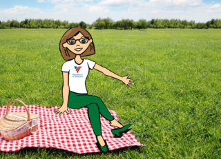 donate with debbie picnic