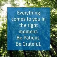 Everything_20comes_20to_20you_20in_20the_20right_20moment._20Be_20patient._20Be_20grateful..jpg