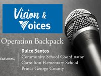 Vision_20_26_20Voices_20graphic-01.jpg
