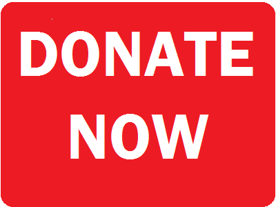 Donate_20Now_20Button.png